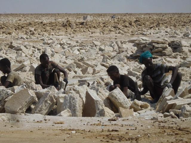 Danakil extraction du sel