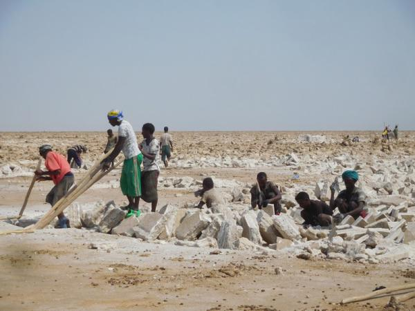 Danakil extraction de sel