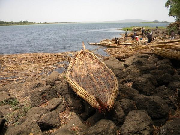 Lac Tana bateau de papyrus