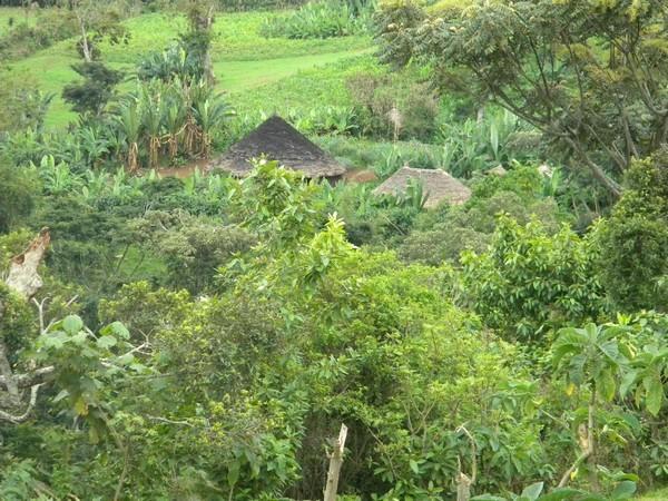Village du Sud